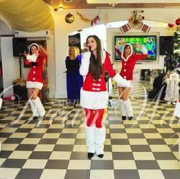 Новогоднее шоу снегурочек